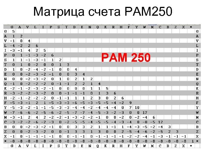 Матрица счета PAM 250