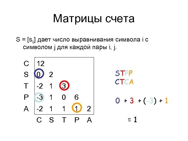 Матрицы счета S = [sij] дает число выравнивания символа i с символом j для
