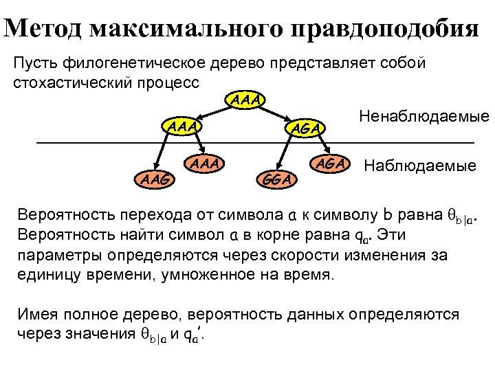 Метод максимального правдоподобия Пусть филогенетическое дерево представляет собой стохастический процесс AAA AAG AAA AGA