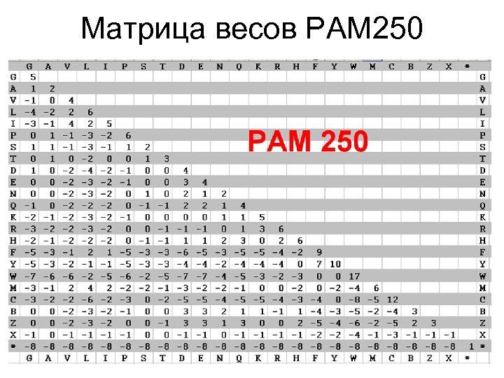Матрица весов PAM 250