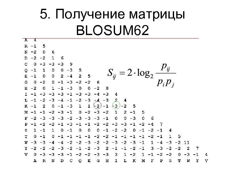 5. Получение матрицы BLOSUM 62
