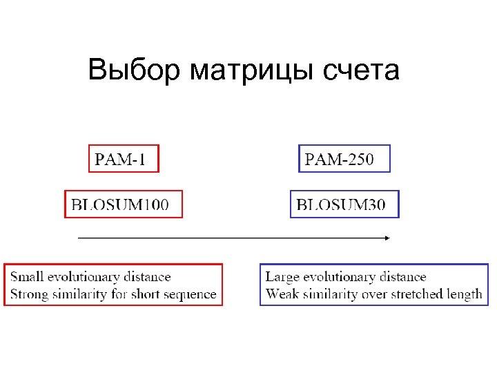 Выбор матрицы счета