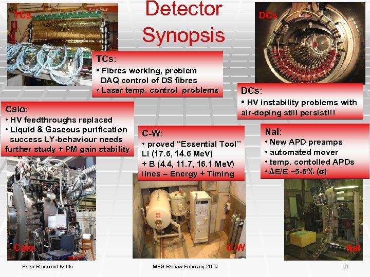 Detector Synopsis TCs DCs TCs: • Fibres working, problem DAQ control of DS fibres