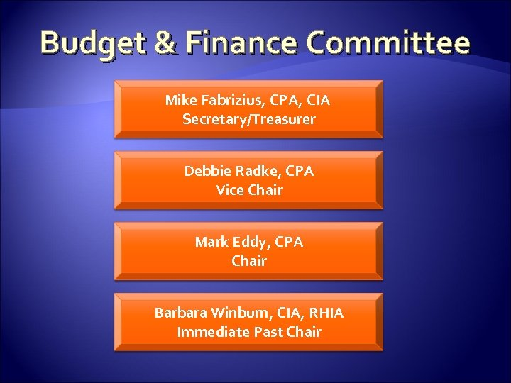 Budget & Finance Committee Mike Fabrizius, CPA, CIA Secretary/Treasurer Debbie Radke, CPA Vice Chair