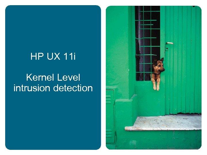 HP UX 11 i Kernel Level intrusion detection