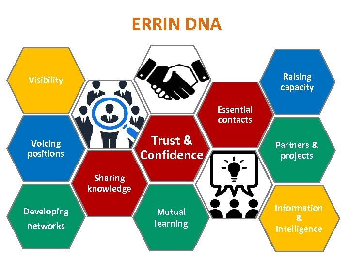 ERRIN DNA Raising capacity Visibility Essential contacts Trust & Confidence Voicing positions Partners &