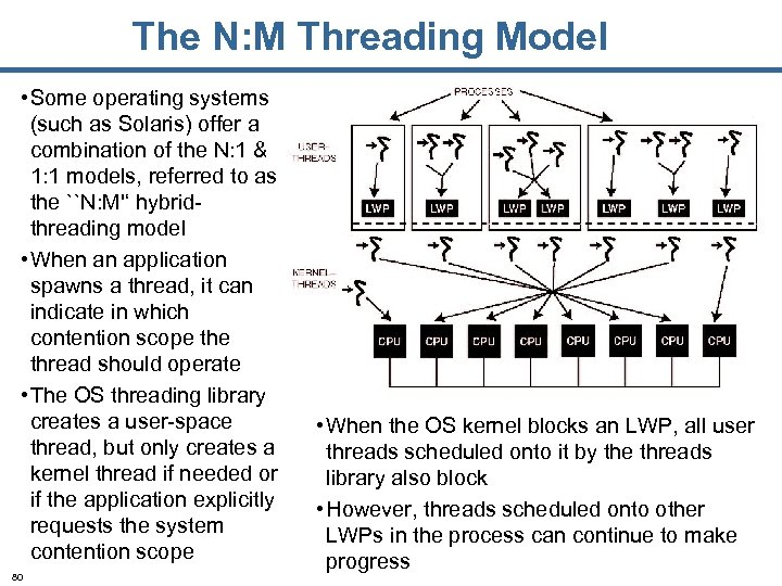 The N: M Threading Model • Some operating systems (such as Solaris) offer a