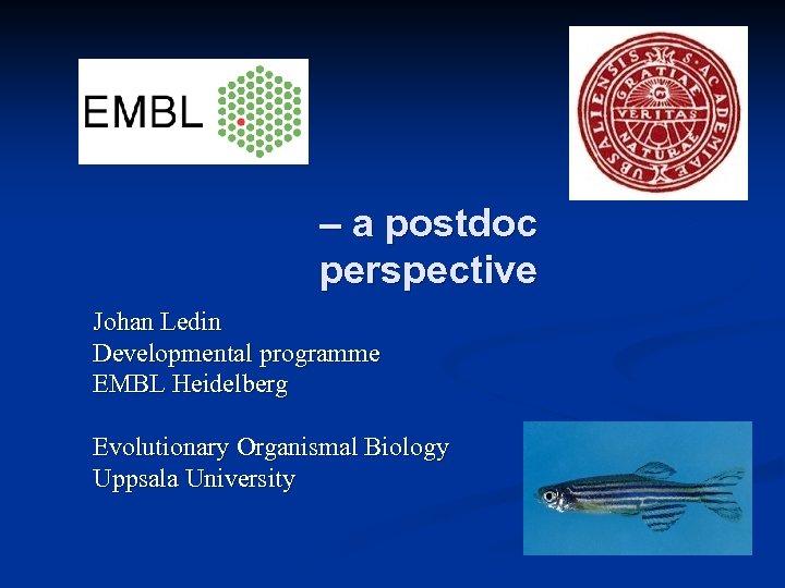 – a postdoc perspective Johan Ledin Developmental programme EMBL Heidelberg Evolutionary Organismal Biology Uppsala