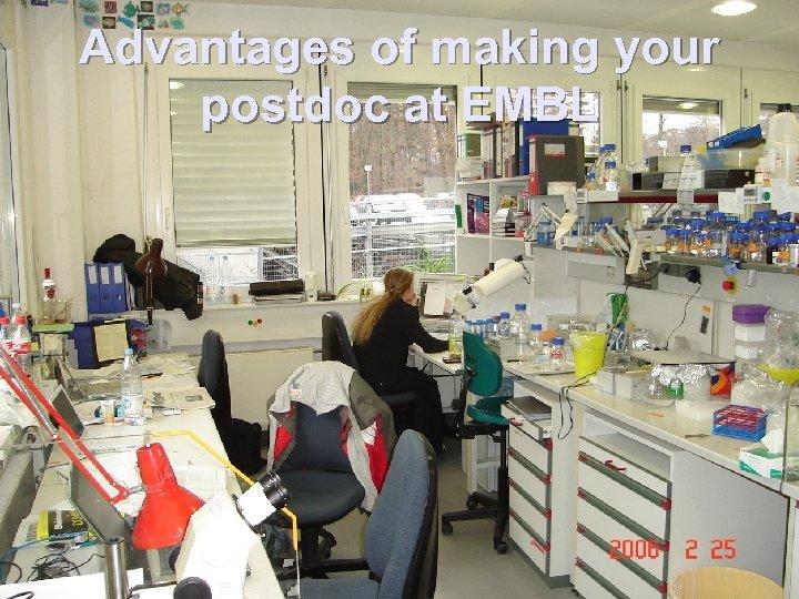 Advantages of making your postdoc at EMBL