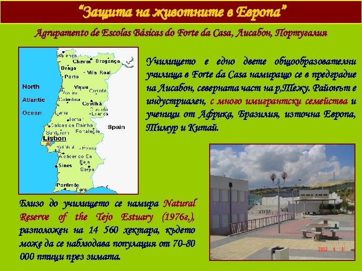 """""""Защита на животните в Европа"""" Agrupamento de Escolas Básicas do Forte da Casa ,"""