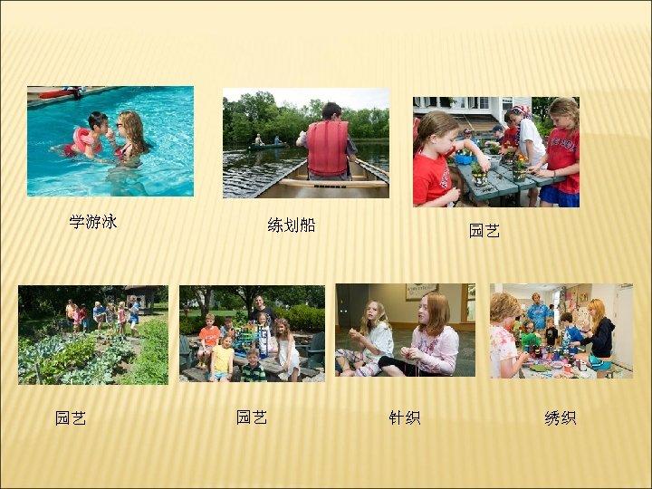 学游泳 园艺 练划船 园艺 园艺 针织 绣织