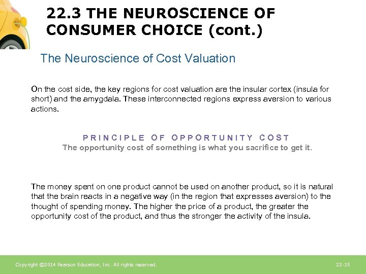 22. 3 THE NEUROSCIENCE OF CONSUMER CHOICE (cont. ) The Neuroscience of Cost Valuation