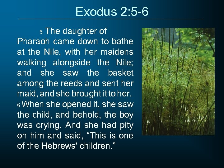 Exodus 2: 5 -6 The daughter of Pharaoh came down to bathe at the