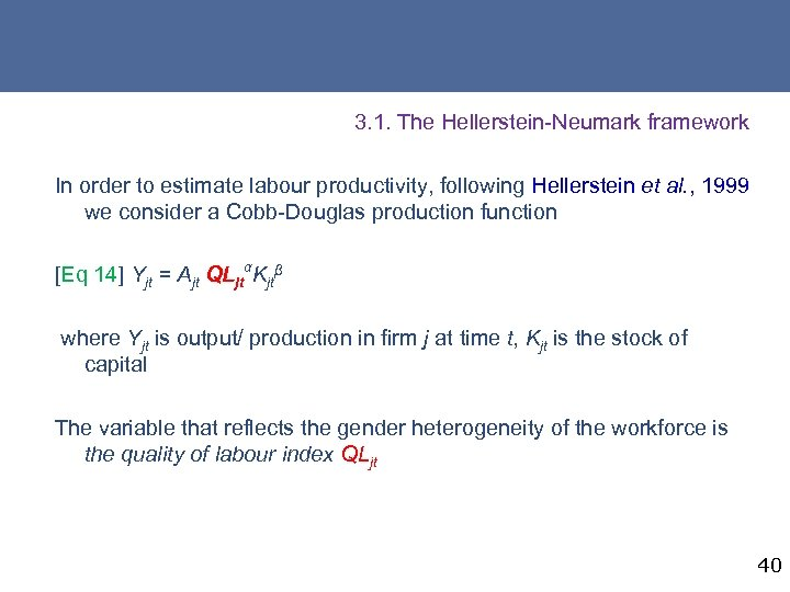 3. 1. The Hellerstein-Neumark framework In order to estimate labour productivity, following Hellerstein et