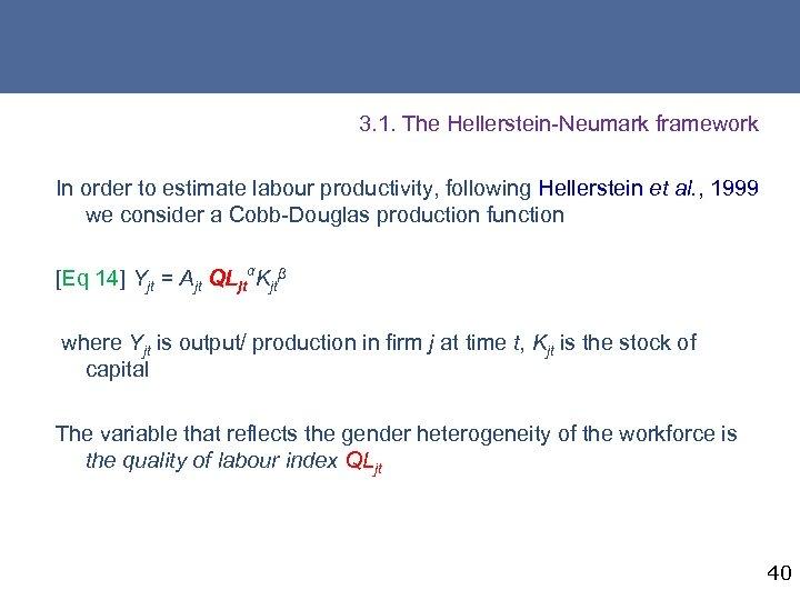 3. 1. The Hellerstein-Neumark framework In order to estimate labour productivity, following Hellerstein et