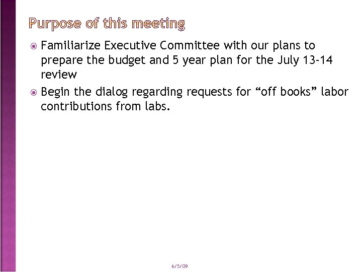 Familiarize Executive Committee with our plans to prepare the budget and 5 year plan