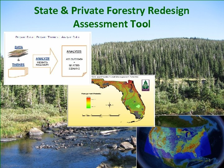 State & Private Forestry Redesign Assessment Tool 1