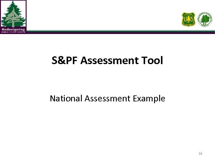 S&PF Assessment Tool National Assessment Example 18