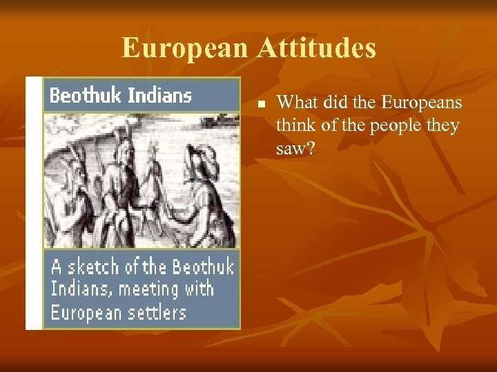 European Attitudes n What did the Europeans think of the people they saw?