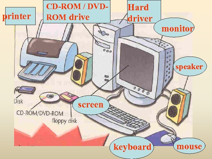 printer CD-ROM / DVDROM drive Hard driver monitor speaker screen keyboard mouse