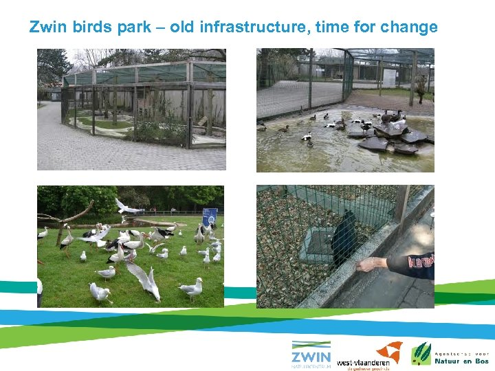 Zwin birds park – old infrastructure, time for change