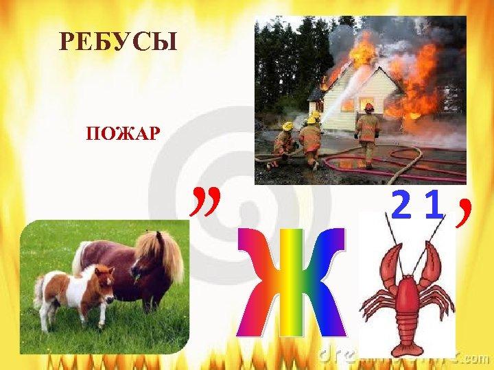 РЕБУСЫ ПОЖАР , , 21 ,