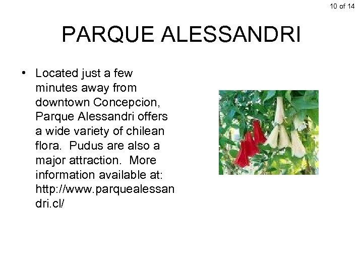 10 of 14 PARQUE ALESSANDRI • Located just a few minutes away from downtown