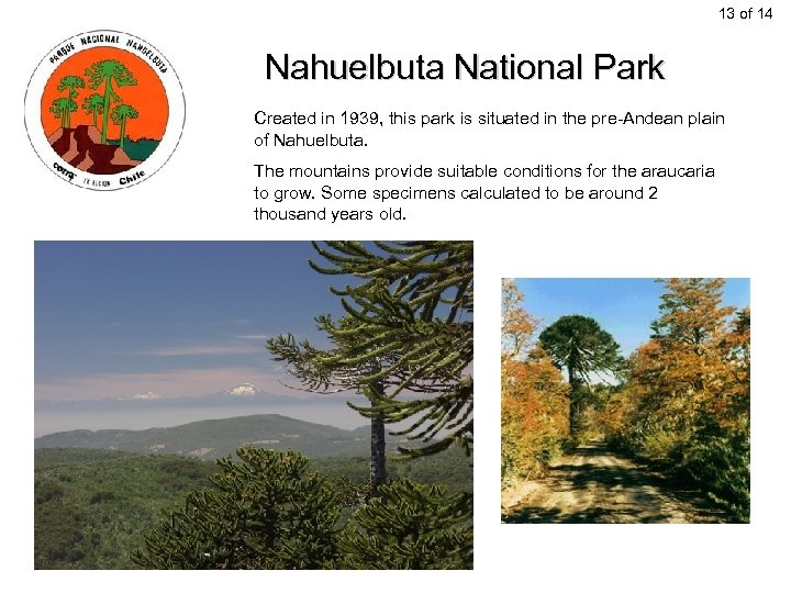 13 of 14 Nahuelbuta National Park Created in 1939, this park is situated in