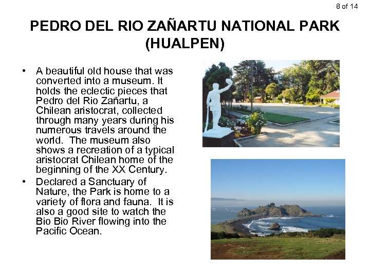 8 of 14 PEDRO DEL RIO ZAÑARTU NATIONAL PARK (HUALPEN) • A beautiful old