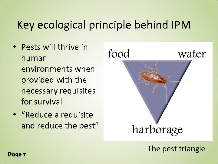 Key ecological principle behind IPM • Pests will thrive in human environments when provided