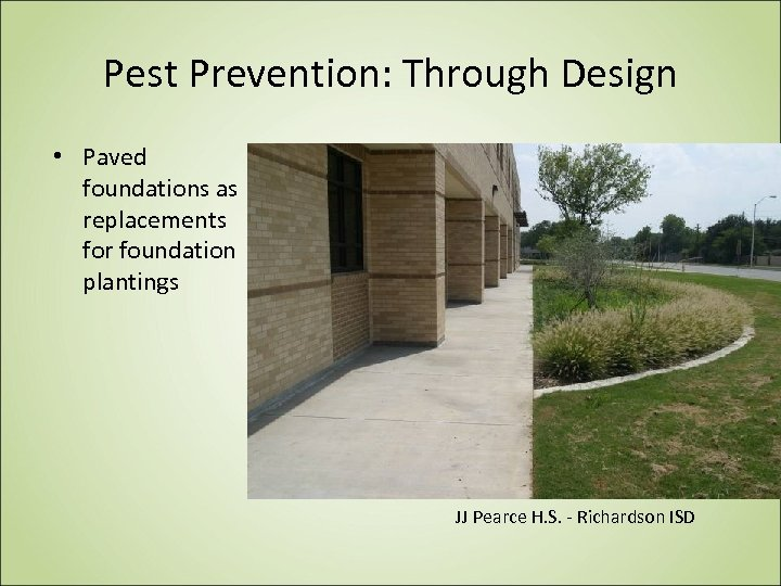 Pest Prevention: Through Design • Paved foundations as replacements for foundation plantings JJ Pearce
