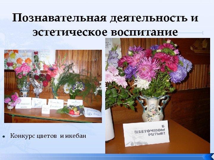 Познавательная деятельность и эстетическое воспитание Конкурс цветов и икебан