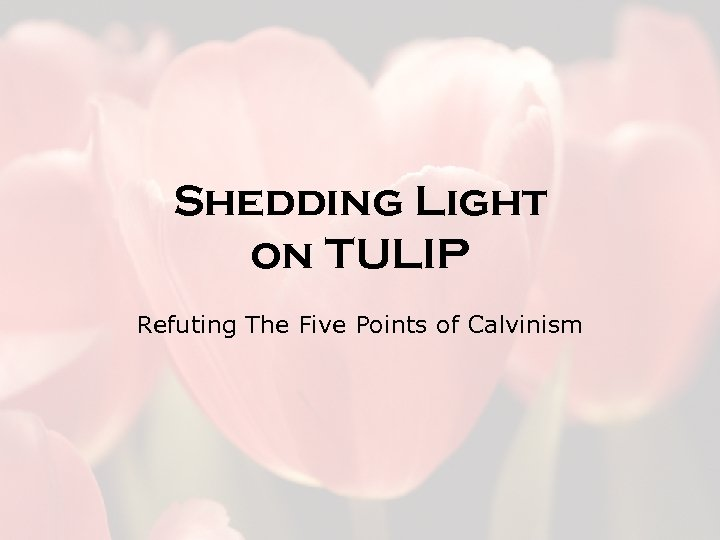 Shedding Light on TULIP Refuting The Five Points of Calvinism