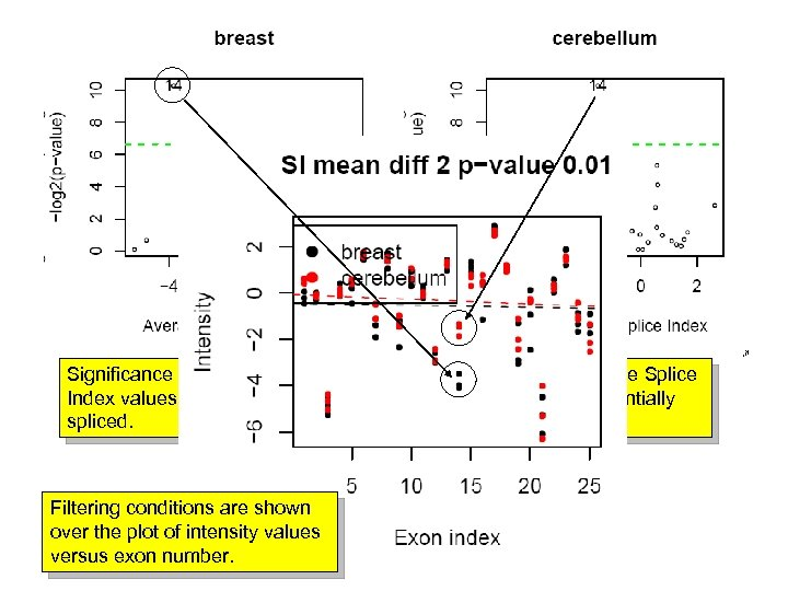 Significance p-value of the alternative splicing versus the average Splice Index values. IN this