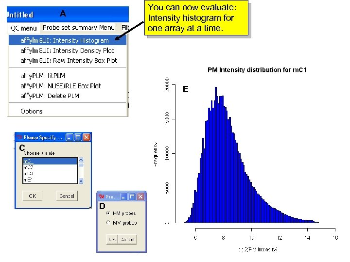 You can now evaluate: Intensity histogram for one array at a time. A E