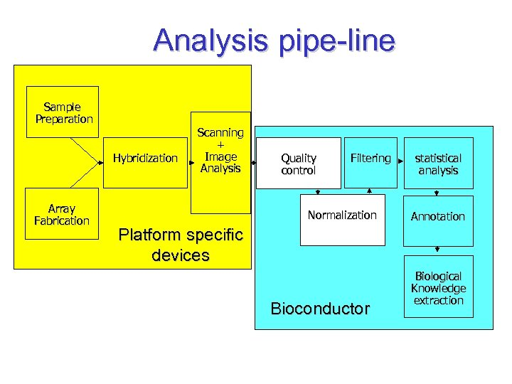 Analysis pipe-line Sample Preparation Hybridization Array Fabrication Scanning + Image Analysis Quality control Filtering