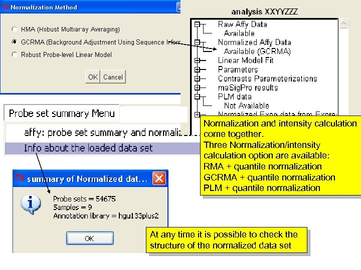 Normalization and intensity calculation come together. Three Normalization/intensity calculation option are available: RMA +