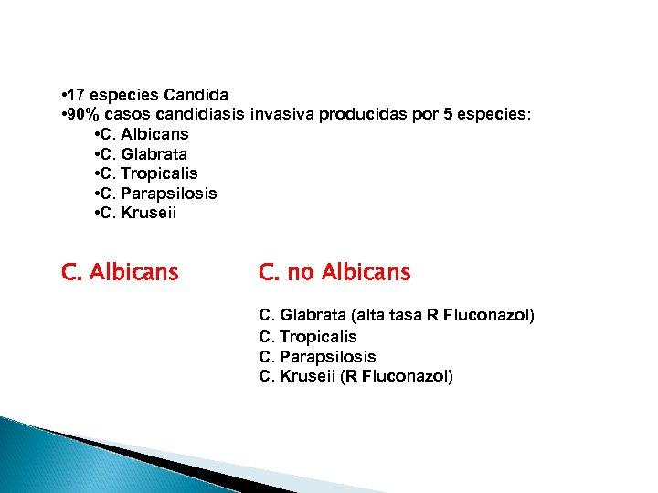 • 17 especies Candida • 90% casos candidiasis invasiva producidas por 5 especies: