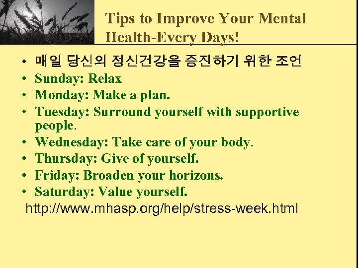 Tips to Improve Your Mental Health-Every Days! • • 매일 당신의 정신건강을 증진하기 위한