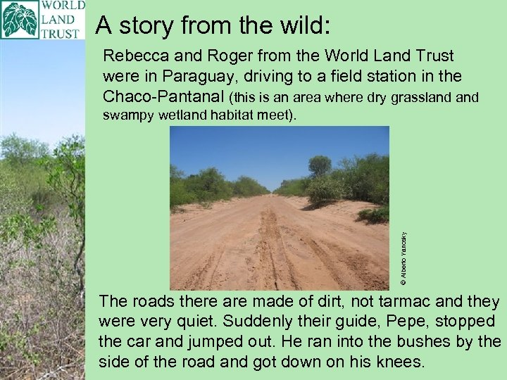 A story from the wild: Rebecca and Roger from the World Land Trust were