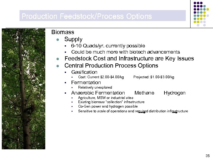 Production Feedstock/Process Options Biomass l Supply § § l l 6 -10 Quads/yr. currently