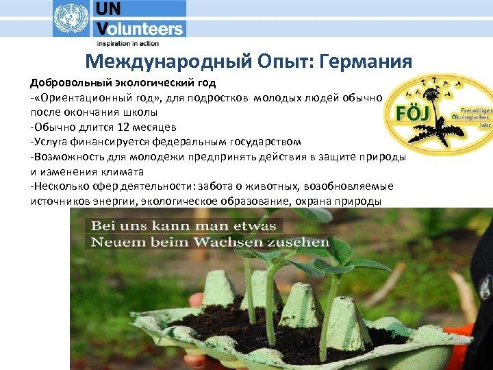 Международный Опыт: Германия Добровольный экологический год - «Ориентационный год» , для подростков молодых людей