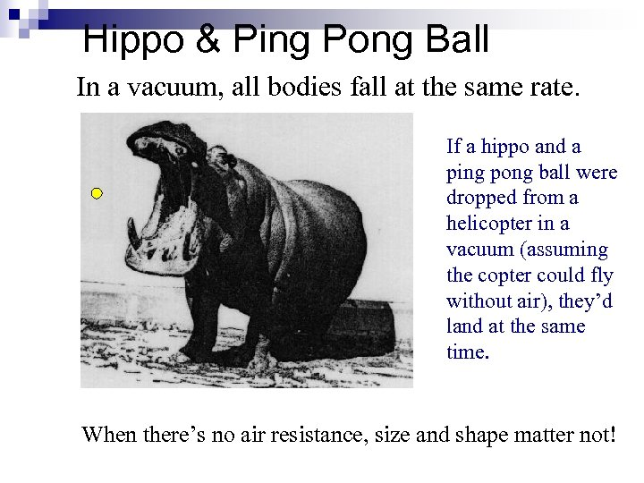 Hippo & Ping Pong Ball In a vacuum, all bodies fall at the same