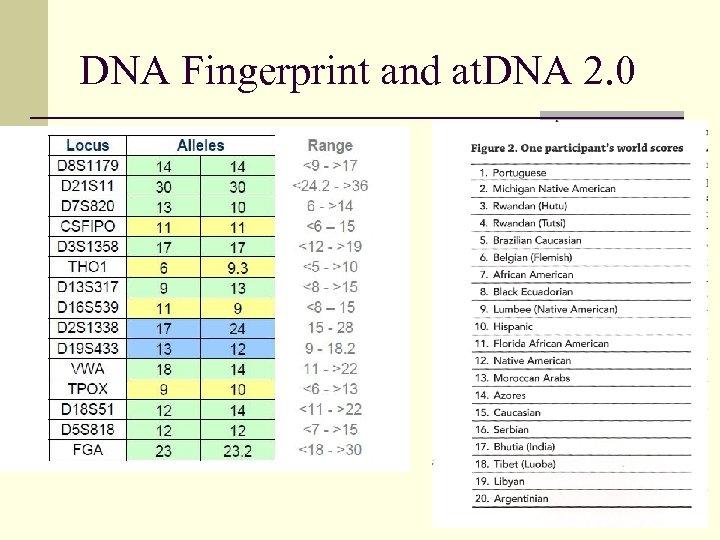 DNA Fingerprint and at. DNA 2. 0
