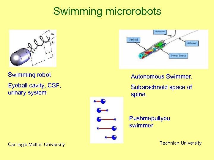 Swimming microrobots Swimming robot Autonomous Swimmer. Eyeball cavity, CSF, urinary system Subarachnoid space of