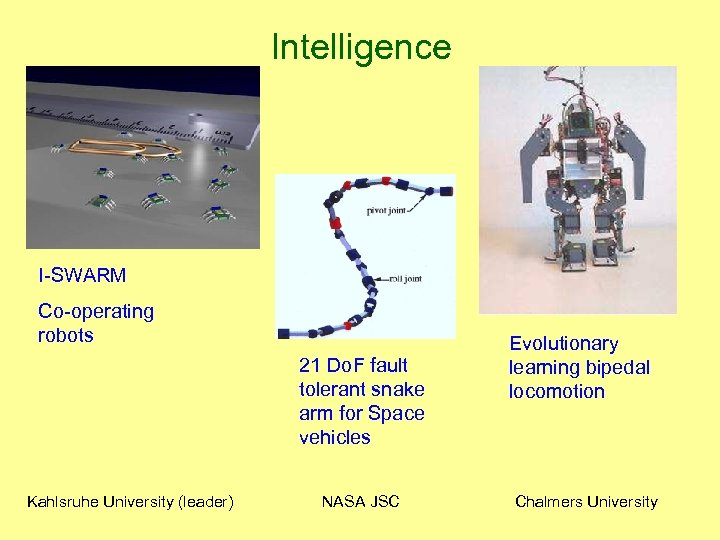 Intelligence I-SWARM Co-operating robots 21 Do. F fault tolerant snake arm for Space vehicles