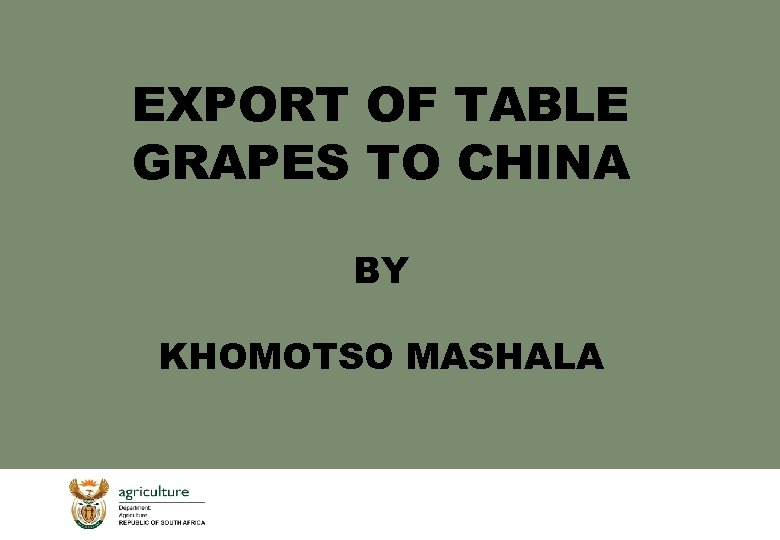 EXPORT OF TABLE GRAPES TO CHINA BY KHOMOTSO MASHALA