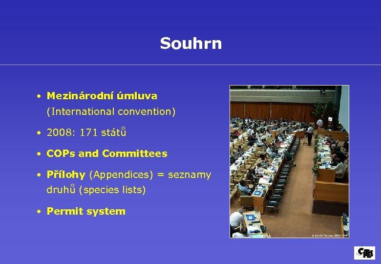 Souhrn • Mezinárodní úmluva (International convention) • 2008: 171 států • COPs and Committees