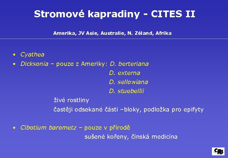Stromové kapradiny - CITES II Amerika, JV Asie, Australie, N. Zéland, Afrika • Cyathea