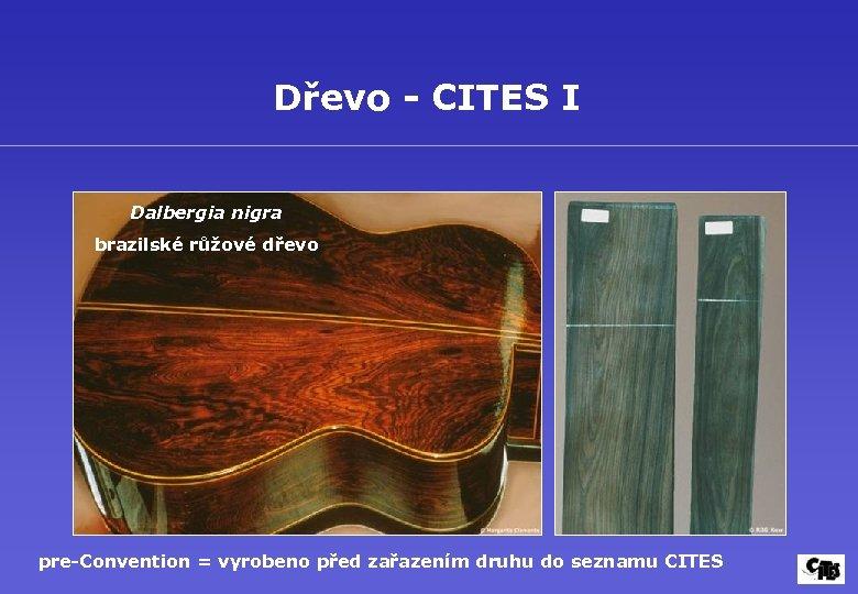 Dřevo - CITES I Dalbergia nigra brazilské růžové dřevo pre-Convention = vyrobeno před zařazením